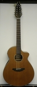 Breedlove Solo Concert 12 String w/ Gigbag