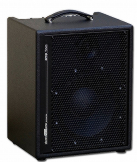AER Amp Two 240W Combo Amp