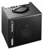 AER Cheeky D 200W Combo Amp
