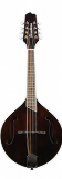 Breedlove Crossover OF VS Mandolin w/ gigbag