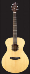 Breedlove Discovery Concert with Gigbag