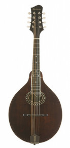 Eastman MD504 Mandolin w/ HSC